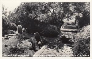 RP: Patio Garden,Tumacacori National Monument, Arizona, 40-50s