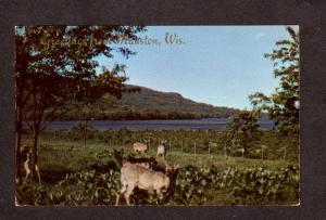 WI Greetings From Mauston Wisconsin Postcard Wis PC