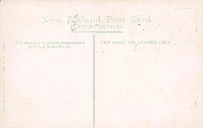 The Brain Pot, Whakarewarewa, New Zealand, Early Postcard, Unused