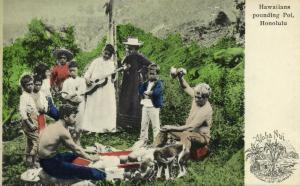 hawaii, HONOLULU, Hawaiians Pounding Poi (1905) Aloha Nui