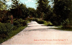 New York Saratoga Springs Road On Pavilion Grounds
