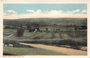 Turn Villa Pennsylvania~Dirt Road~Farm Fields~House~Monroe County~1920s Postcard