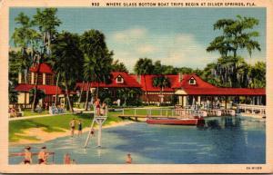 Florida Silver Springs Where Glass Bottom Boat Trips Begin Curteich