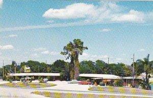 Florida Lakeside Motel