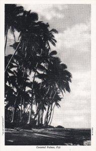 FIJI , 30-40s ; Costal Palms