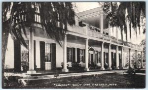 NATCHEZ, Mississippi  MS    Built 1790  LINDEN  Albertype  Postcard