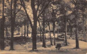 La Plume Pennsylvania Junior College Street View Antique Postcard K55565
