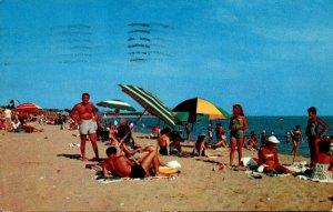 Virginia Virginia Beach Sun Bathers 1957