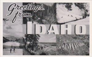 Idaho Greetings From Idaho