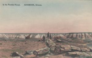ADAMANA, Arizona, 1920-30s; In the Petrified Forest # 2