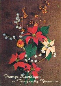 Winter Holidays greetings Postcard floral arrangement