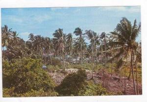 Malay Kampong, Singapore 1950-60s