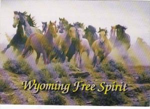 Wyoming McCullough Peak Wild Horse Round Up