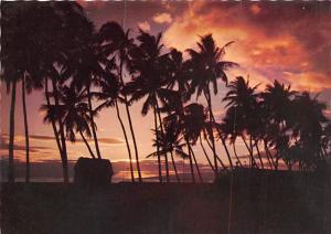 Flaming Tropical Sunset - Fiji