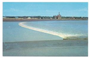3 PCs Moncton New Brunswick Tidal Bore Petitcodiac Surf