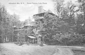 Lake Placid New York Forest Towers Scenic View Antique Postcard K98541