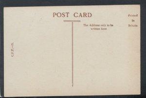Northamptonshire Postcard - Harlestone Firs, Northampton    RS19179
