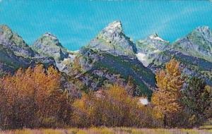Autumn View Of Grand Teton Grand Teton National Park Wyoming