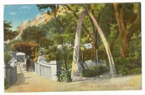 Gibraltar: Whale arch Bridge, 00-10s