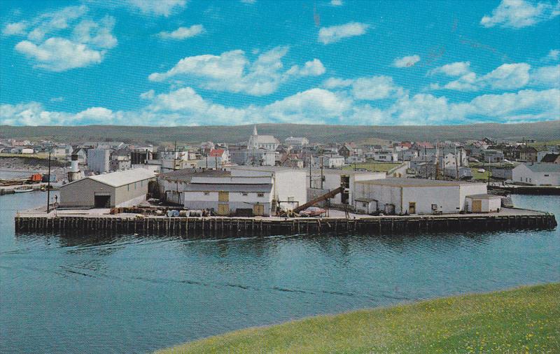Fish Plant , FORTUNE , Newfoundland , Canada , 50-60s