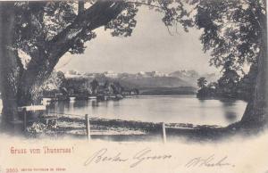 Gruss vom Thunersee!, Switzerland , PU-1902