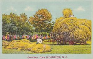 New Jersey Greetings From Woodbine