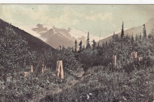 ROGERS PASS , B.C. , Canada , 00-10s