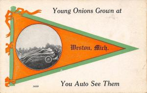 Weston Michigan~Exaggerated Onions Fill Car~You Auto See Them 1914 Pennant PC