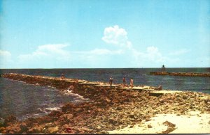 Florida Venice World Famed Fishing Jetties