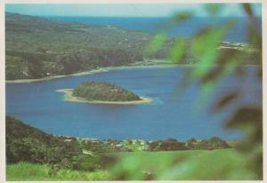 The Island Lake Wilderness Cape South Africa Postcard