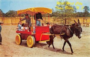 Toms River New Jersey Wild West City Donkey Cart Vintage Postcard K107740