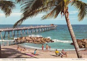 Florida Deerfield Beach Glamorous Florida