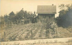 c1910 Backyard Garden Vegetable Patch Rural Home RPPC Photo Postcard