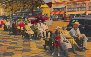 The Green Benches, St. Petersburg, Florida,  Early Linen Postcard