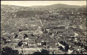 new zealand, WELLINGTON, from Mt. Victoria (1910s) RPPC