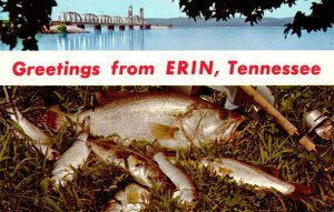 Tennessee Greetings From Erin L & N Railroad Bridge and Game Fish Kentucky Lake