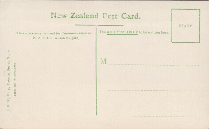Paeroa NZ New Zealand Looking South West J&W Harp Real Photo Postcard E56