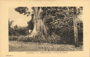 CPA Dahomey Afrique - Porto-Novo - Le Route de l'Hopital (86803)