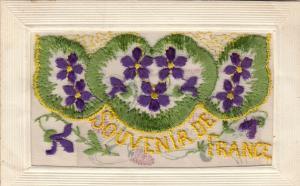 Hand Sewn, 1900-10s; Souvenir De France, purple flowers, Insert