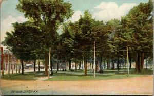 Clinton NY~Park Benches Get Lots of Use in Downtown  City Park~1909 Rotograph