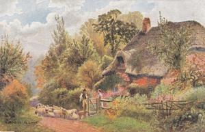 A Hampshire Lane , 1900-10s ; TUCK #7113