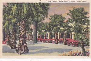 Texas Corpus Christi Palm Grove North Beach 1948 Curteich