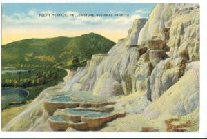 Pulpit Terrace, Yellowstone National Park 1959 used Postcard