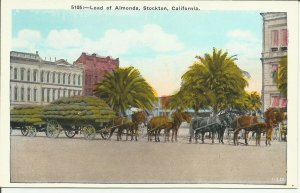 Horses Carrying a Load Of Almonds, Stockton, California