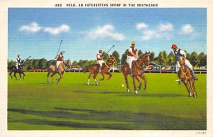 An interesting spofrt in the Southland, Linen Polo Postcard Unused