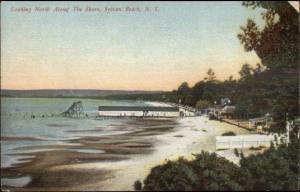 Sylvan Beach NY North Along Shore c1910 Postcard