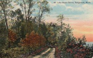 SAUGATUCK, Michigan, 1912; Lake Shore Drive