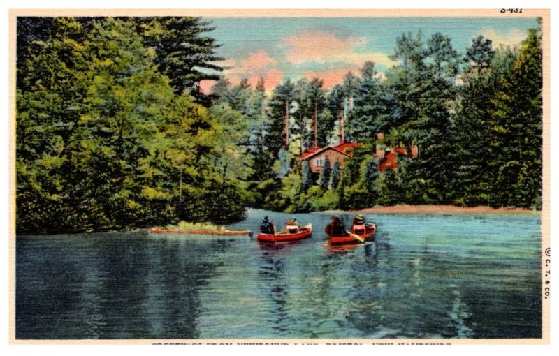 New Hampshire Bristol  Greetings from  Newfound Lake