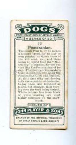 166935 POMERANIAN by WARDLE Player CIGARETTE card ADVERTISING