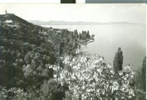 Hungary, Greetings from Lake  Balaton, used real photo